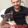 Bosst´s dating profil. Bosst er 37 år og kommer fra København - søger Kvinde. Opret en dating profil og kontakt Bosst